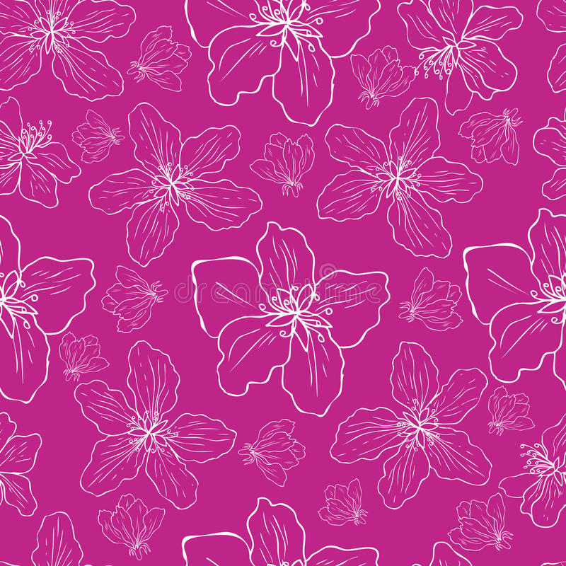 Apple flower tree blossom colorful sketch hand drawn isolated on pink background, seamless vector floral pattern, pink stock illustration