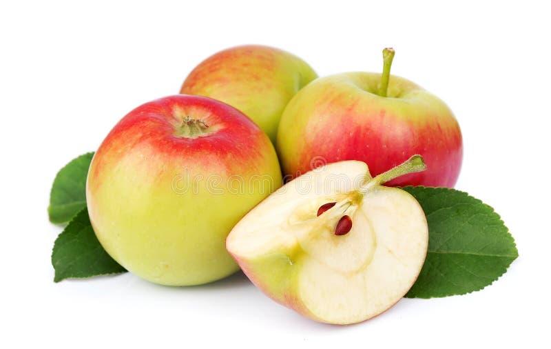 Apple-Früchte mit Schnitt stockbild