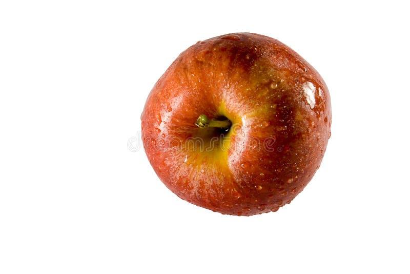 Apple frais image stock