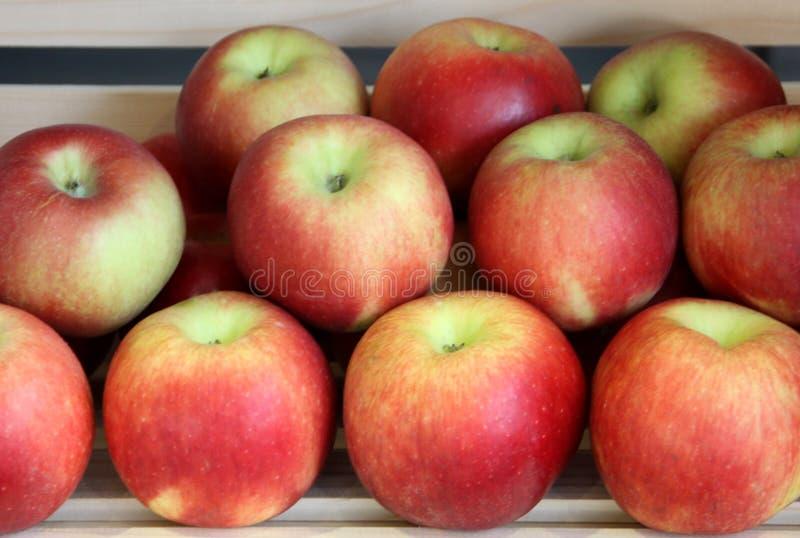 Apple-frische Früchte stockfotografie