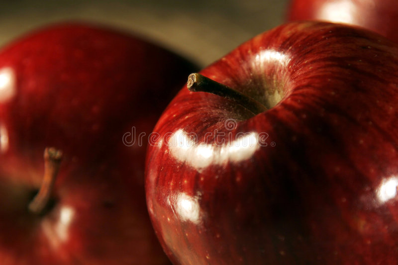 Apple fruit stock photo