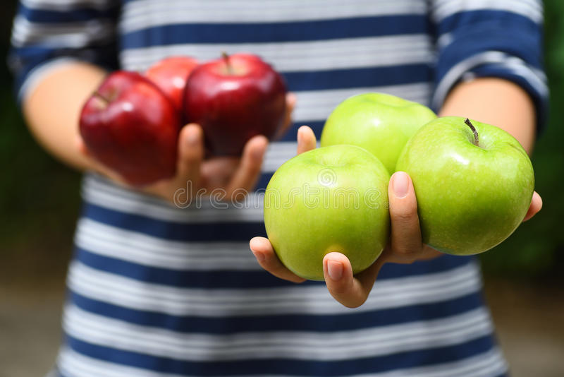 Apple fruit holding by hand,Apple picking. Green and red apple fruit holding by hand,Apple picking or harvest,Healthy fruit stock images