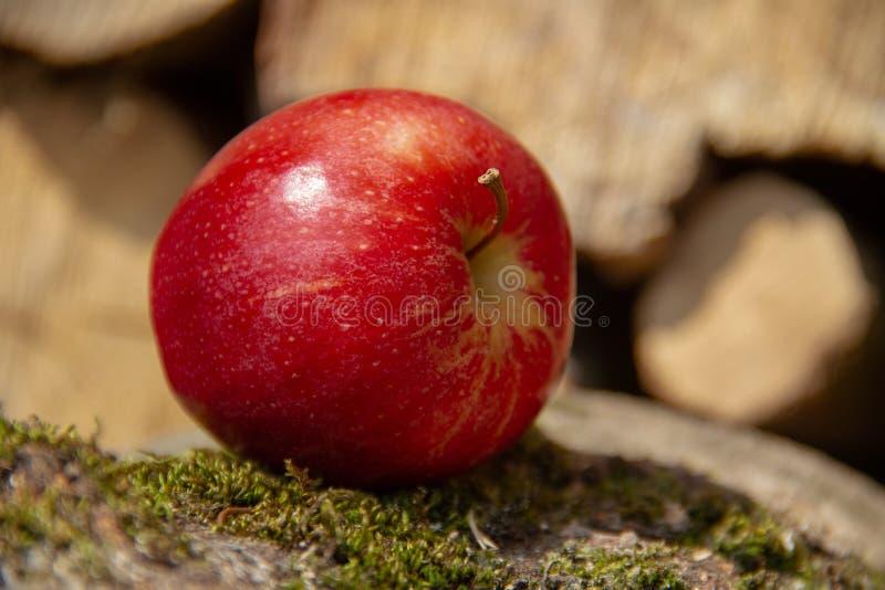 Apple, Fruit, Local Food, Close Up stock photos