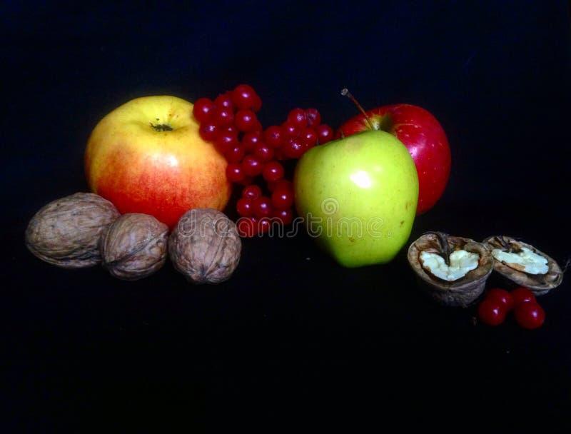 Apple, fruta, nueces, aún vida, foto fotografía de archivo