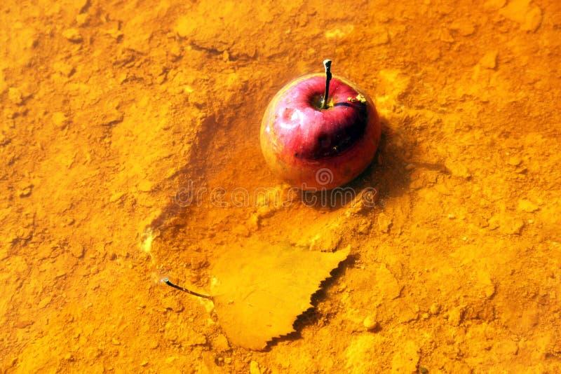 Apple in giftig water royalty-vrije stock afbeeldingen