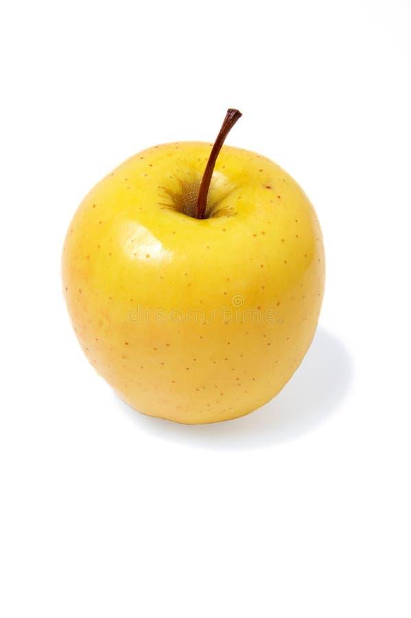 Apple golden lizenzfreie stockfotos