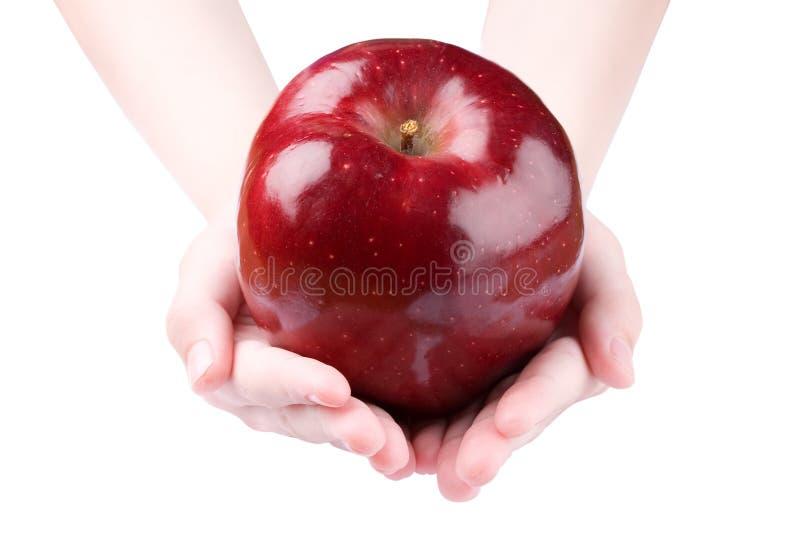 apple gospodarstwa obrazy stock
