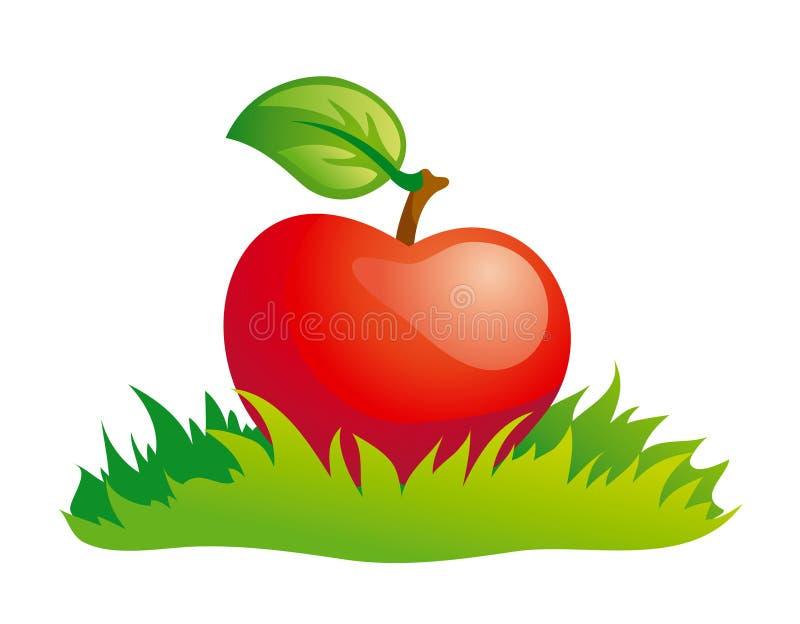 Apple in grass stock photos