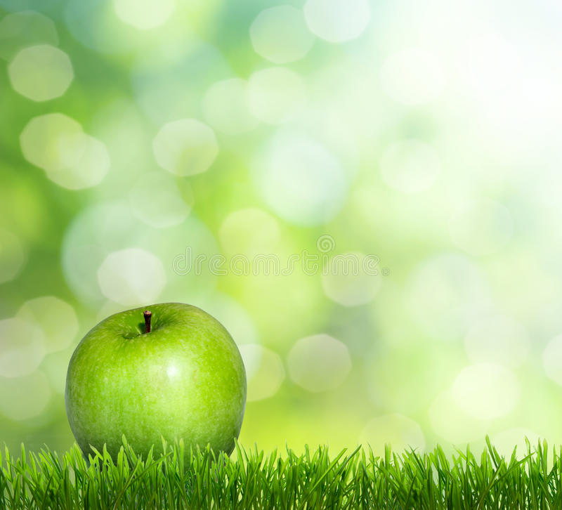 Download Apple on grass stock image. Image of brightly, droplet - 23660023