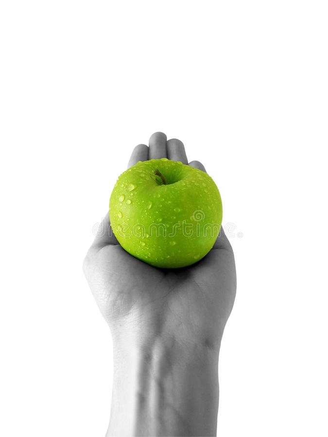Apple at hand royalty free stock photo