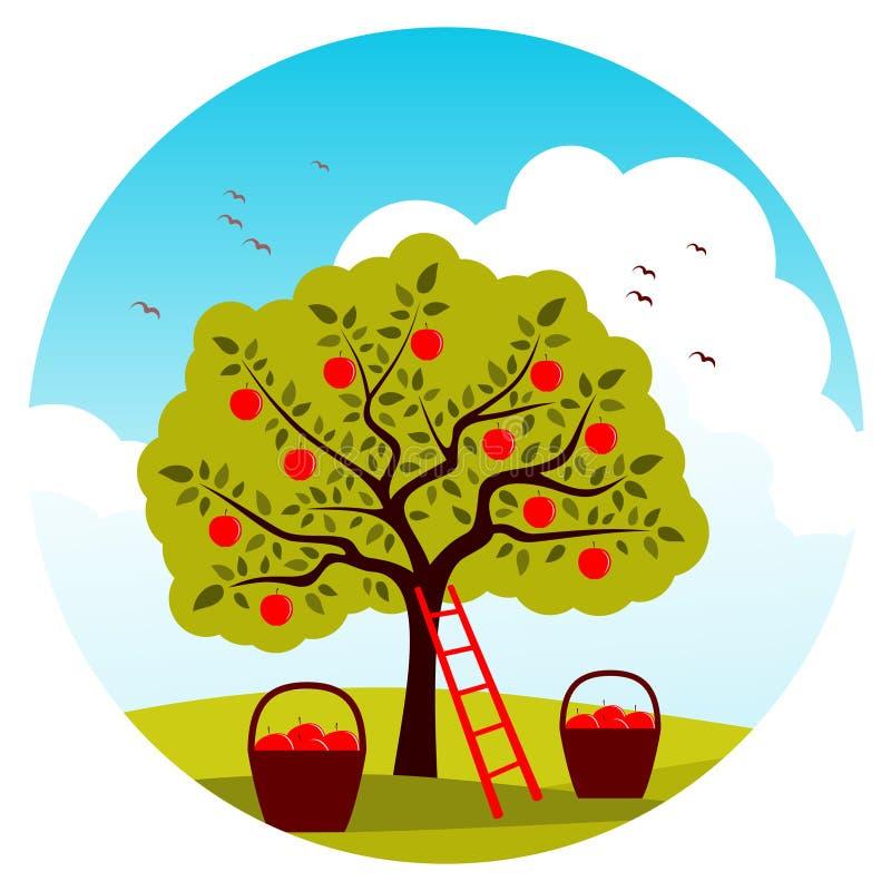 Apple harvest royalty free illustration