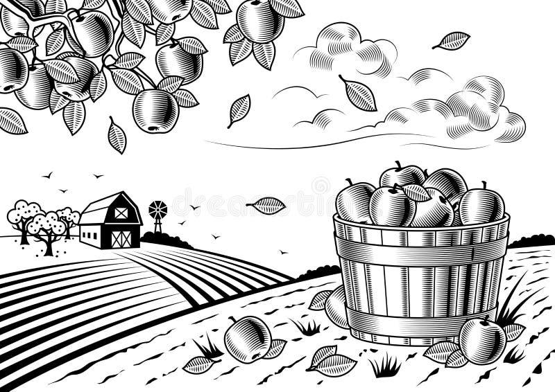 Apple harvest landscape black and white vector illustration