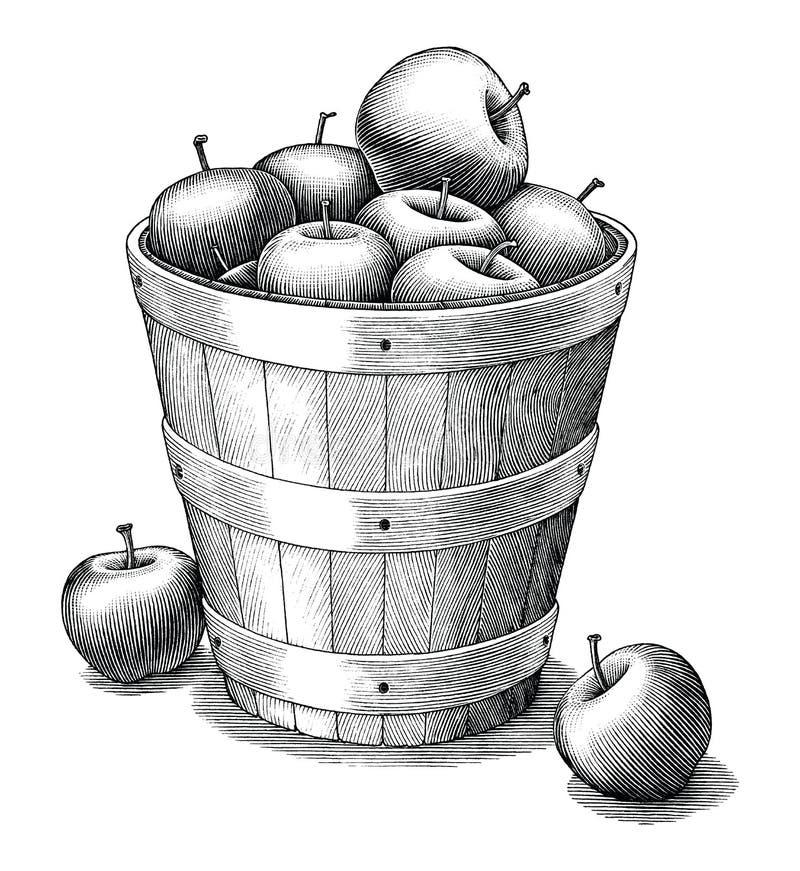 Apple i korghanden som drar konst för gem för tappningstil som svartvit isoleras på vit bakgrund royaltyfri illustrationer