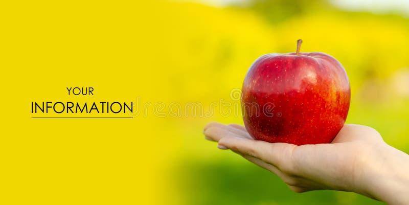Apple i modell för natur för sol för handsidaträd grön royaltyfria foton