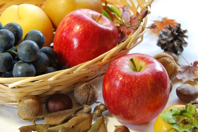 Apple i owoc obraz stock