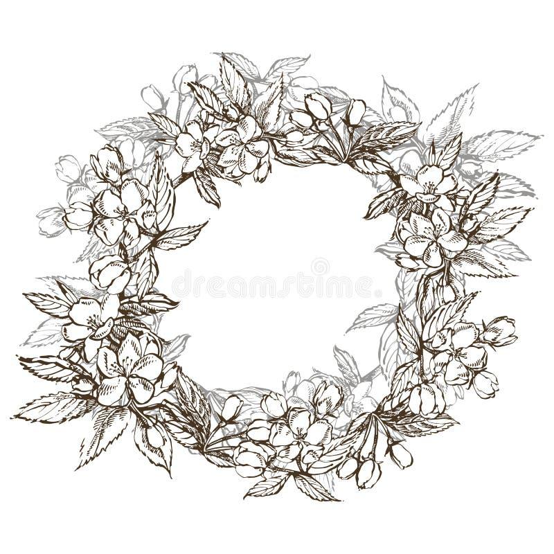 Apple-illustratie Hand getrokken patronen met geweven appelillustratie Uitstekende botanische hand getrokken illustratie stock illustratie