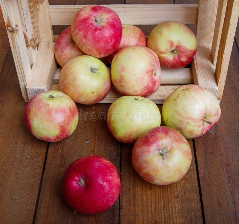 Apple im Kasten stockbild