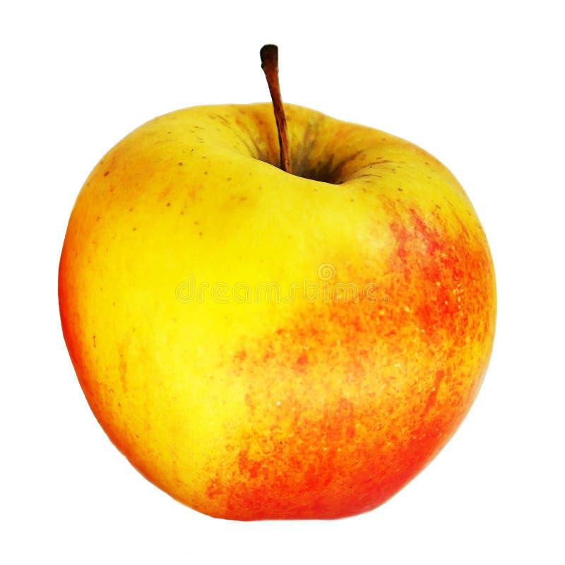 Apple a isolé sur le blanc photos stock