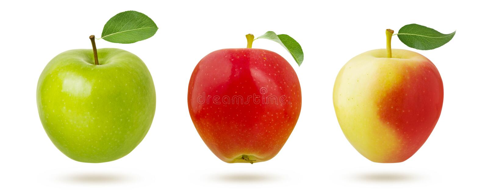 Apple isolated. Green, red and yellow ripe juicy multicolor apples fruit with fresh leaf isolated on white background with royalty free stock images