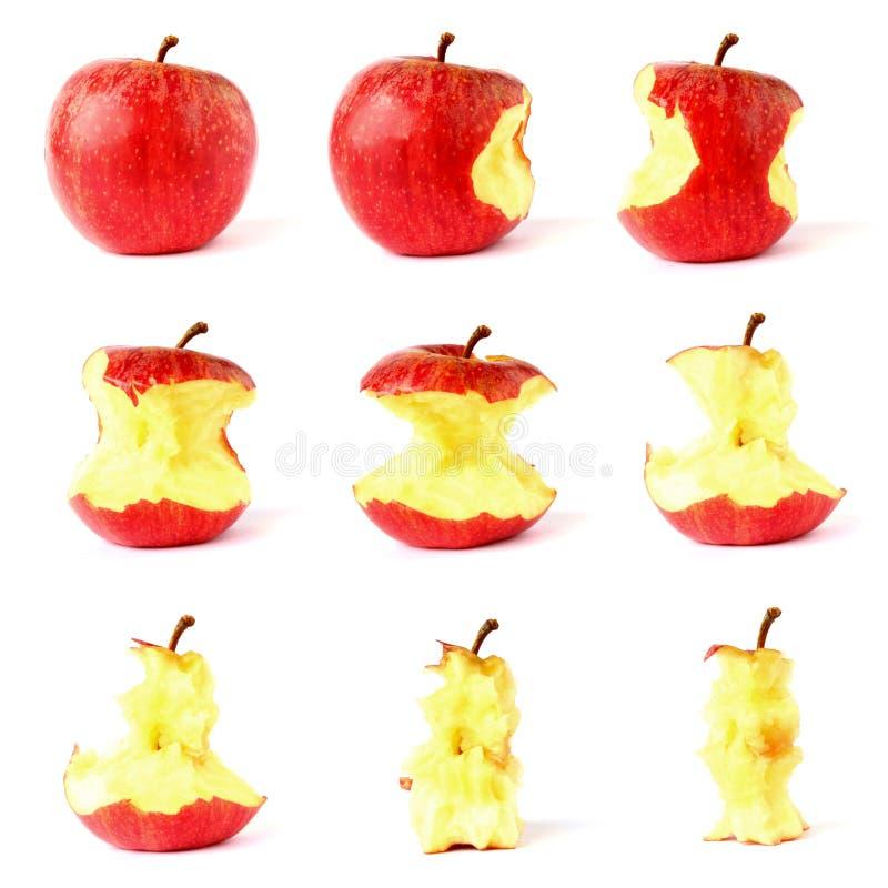 Download Apple Isolerade På Vit Bakgrund Fotografering för Bildbyråer - Bild av läckert, kärna: 27288463
