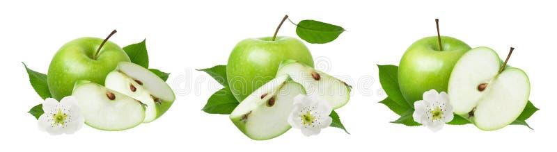 Apple isolou-se Ajuste das maçãs inteiras maduras verdes com a fatia cortada, as folhas frescas e as flores isoladas no fundo bra fotos de stock