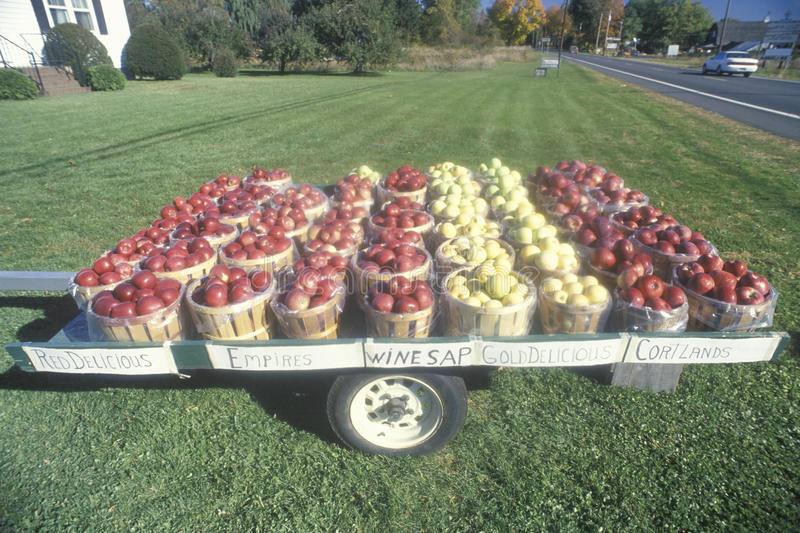 Apple-Körbe, die auf einem Anhänger durch den Straßenrand in Clermont, NY sitzen stockfoto