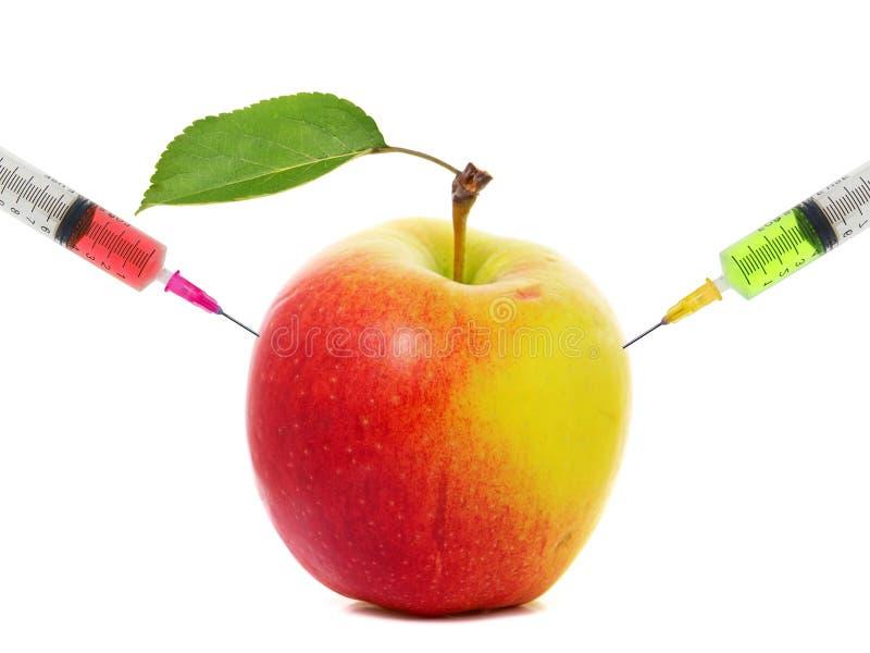 Apple klibbade med injektionssprutan, begrepp av genetisk ändring av frukter royaltyfri bild