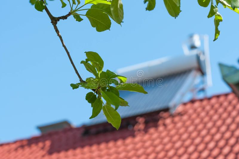 Apple leaves on focus, solar water heater. In the blurry background, conceptual green house image royalty free stock images