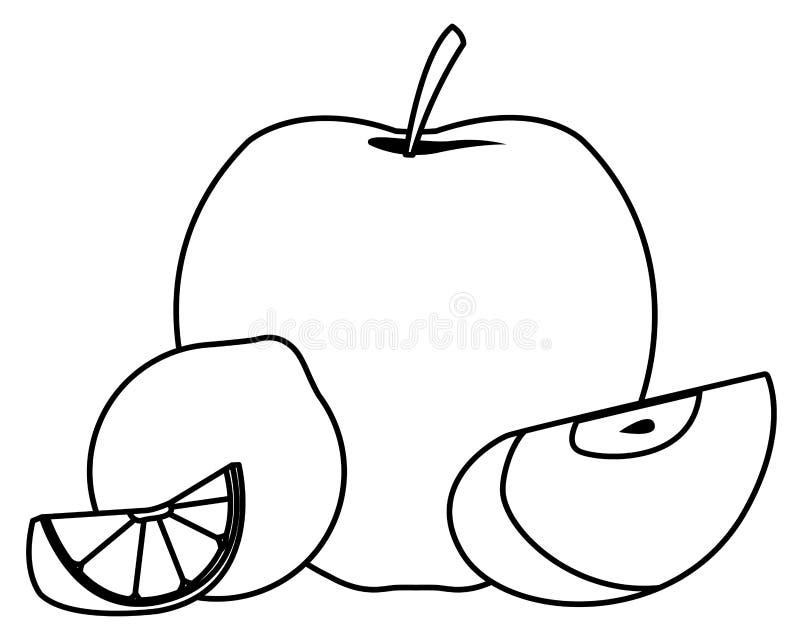 Apple and lemon sliced fruits in black and white vector illustration