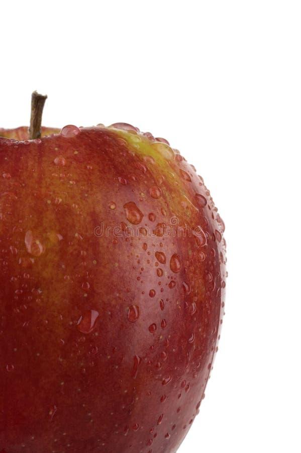 Apple maduro. imagem de stock