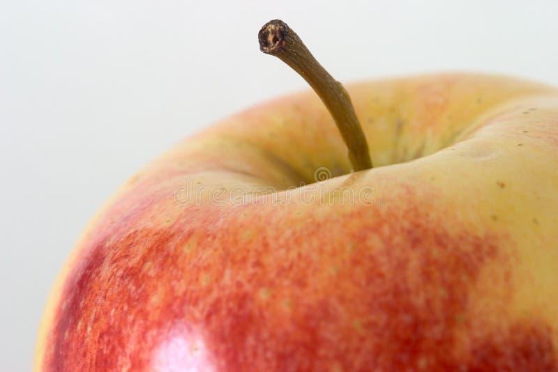 Apple-Makro lizenzfreie stockfotos