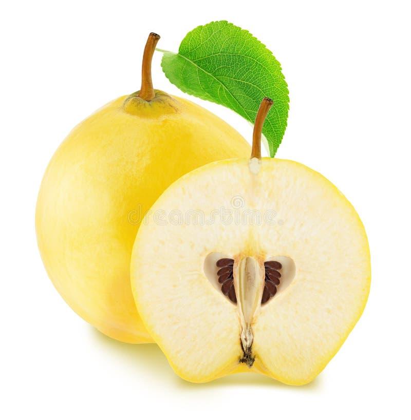 Apple-marmelos inteiros e partidos ao meio isolados no fundo branco foto de stock