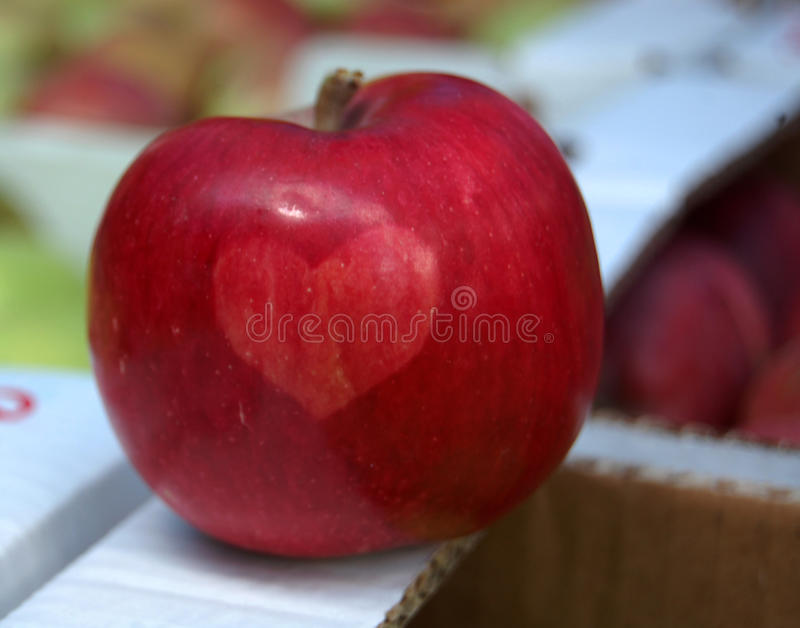 Apple met hart stock foto