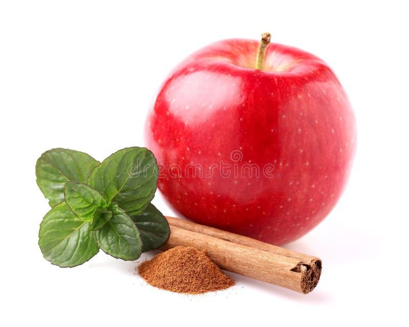 Apple met kruiden stock afbeelding