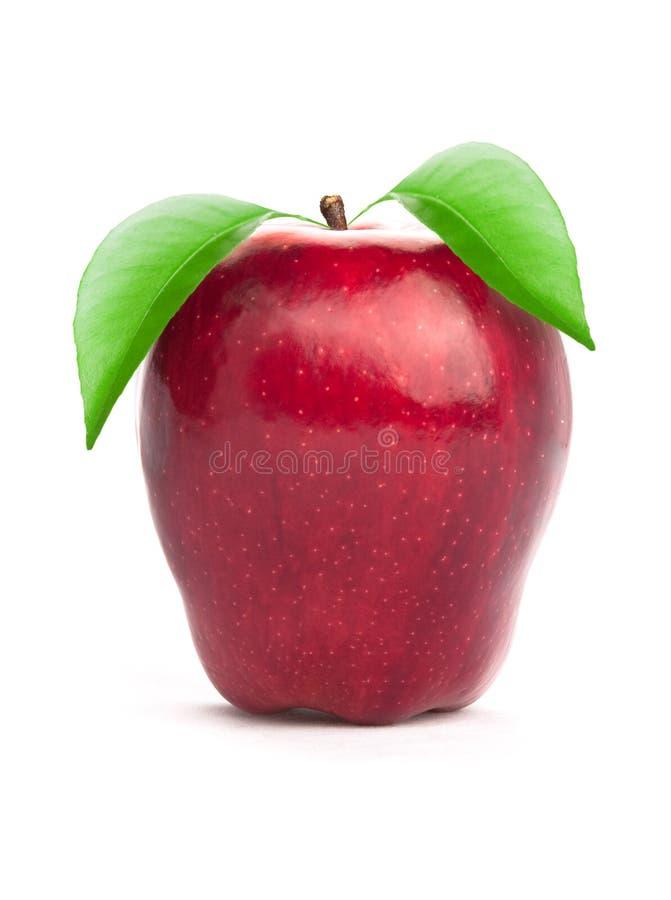 Apple mit Blatt lizenzfreie stockfotografie