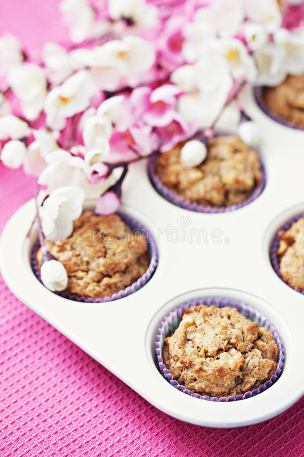 Apple muffins royalty free stock photo