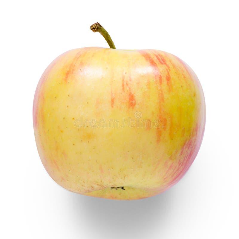Apple na białym tła odosobnieniu obrazy royalty free