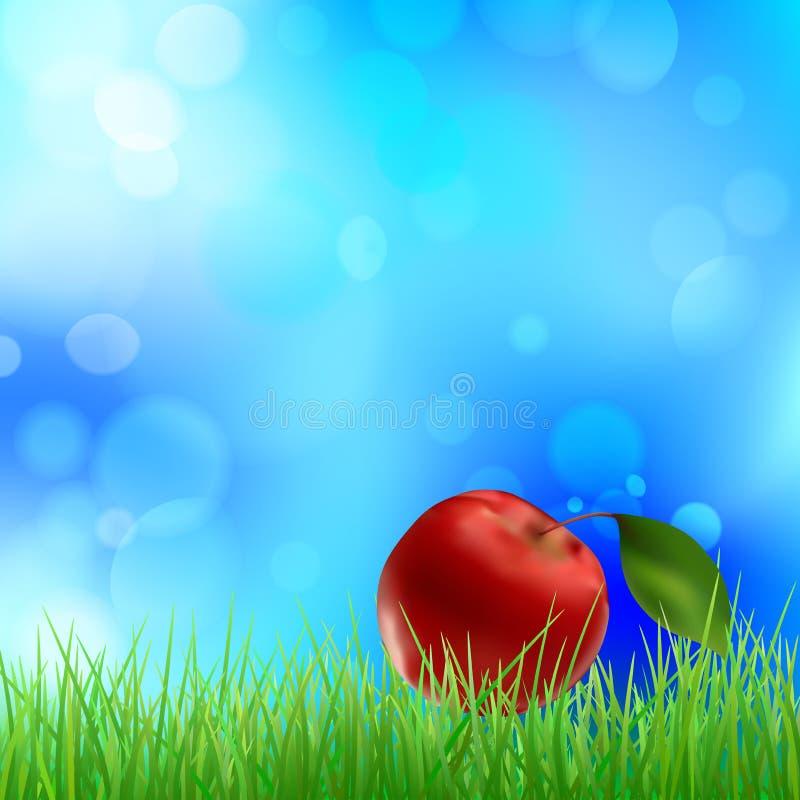 Apple na grama verde ilustração royalty free