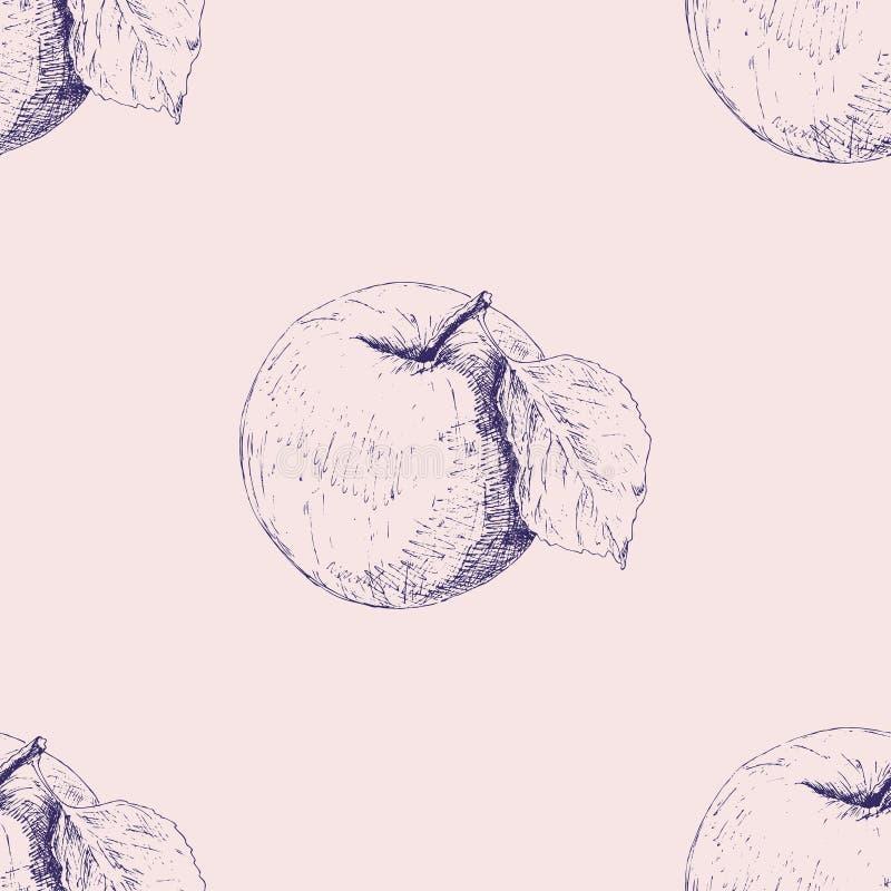Apple Naadloze achtergrond met appelenkernen Vector kunstillustratie De tekening van de hand Patroon met natuurlijke motieven voo vector illustratie