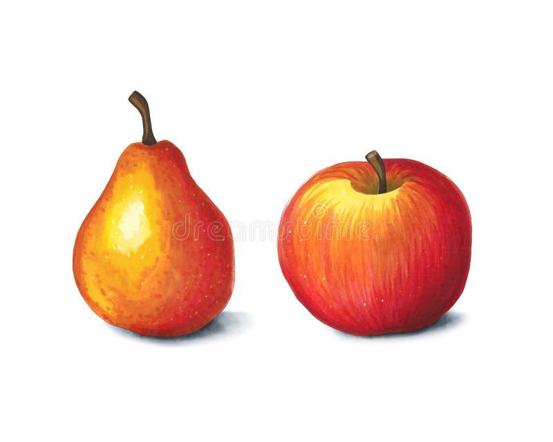 Apple och päron på en vit bakgrund Skissa gjort i alkohol mars royaltyfri bild