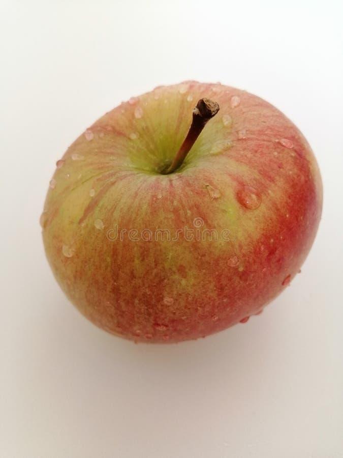Apple odizolowywa? na bia?ym tle fotografia royalty free