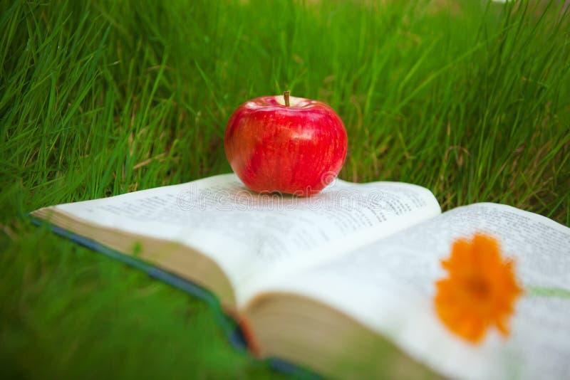 Apple op het boek royalty-vrije stock foto's