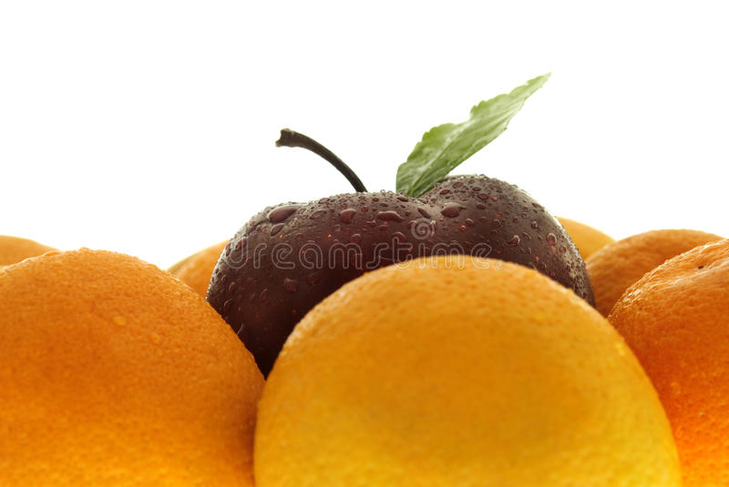 Apple and oranges. An apple sits in the middle of a crowd of oranges stock images