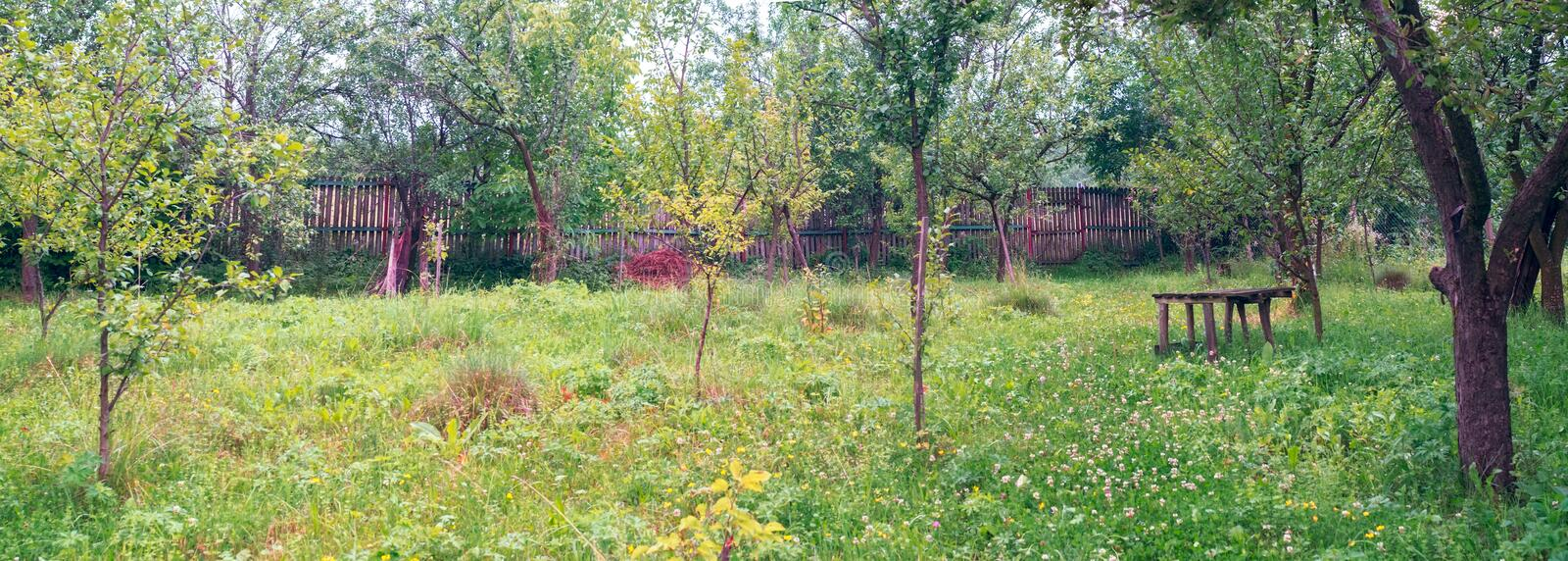 The apple orchard behind the house and an old bench stock photography
