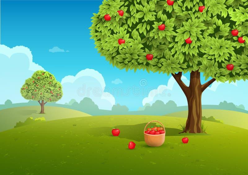 Apple orchard illustration vector illustration