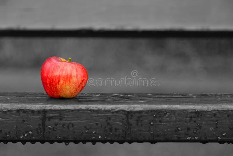 Apple på bänk fotografering för bildbyråer