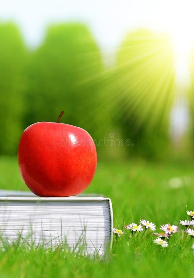 Apple på boken i gräs arkivfoto