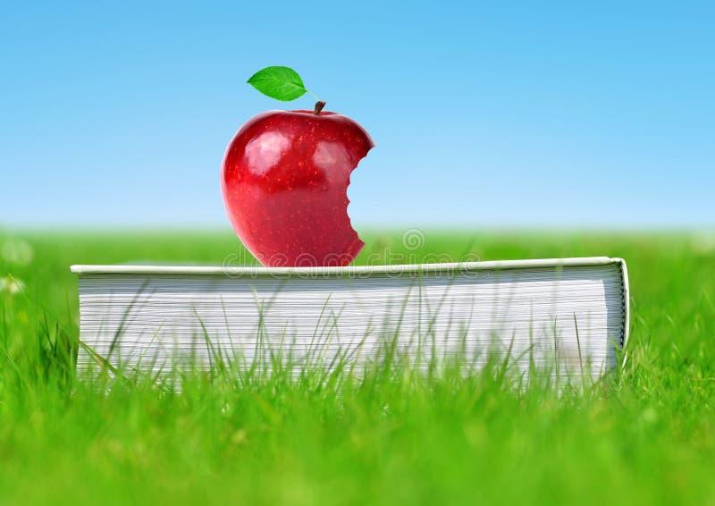 Apple på boken i gräs fotografering för bildbyråer