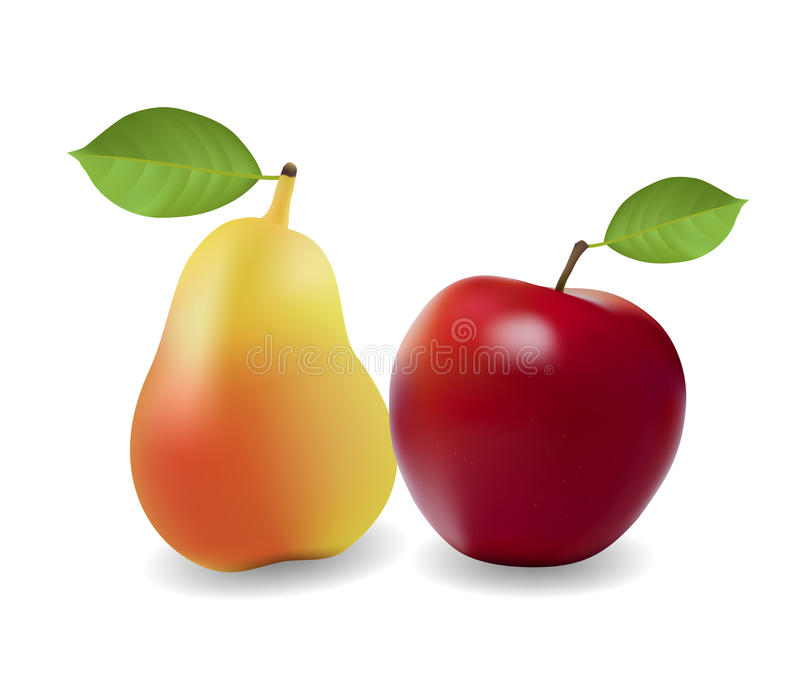 Apple and pear. stock illustration