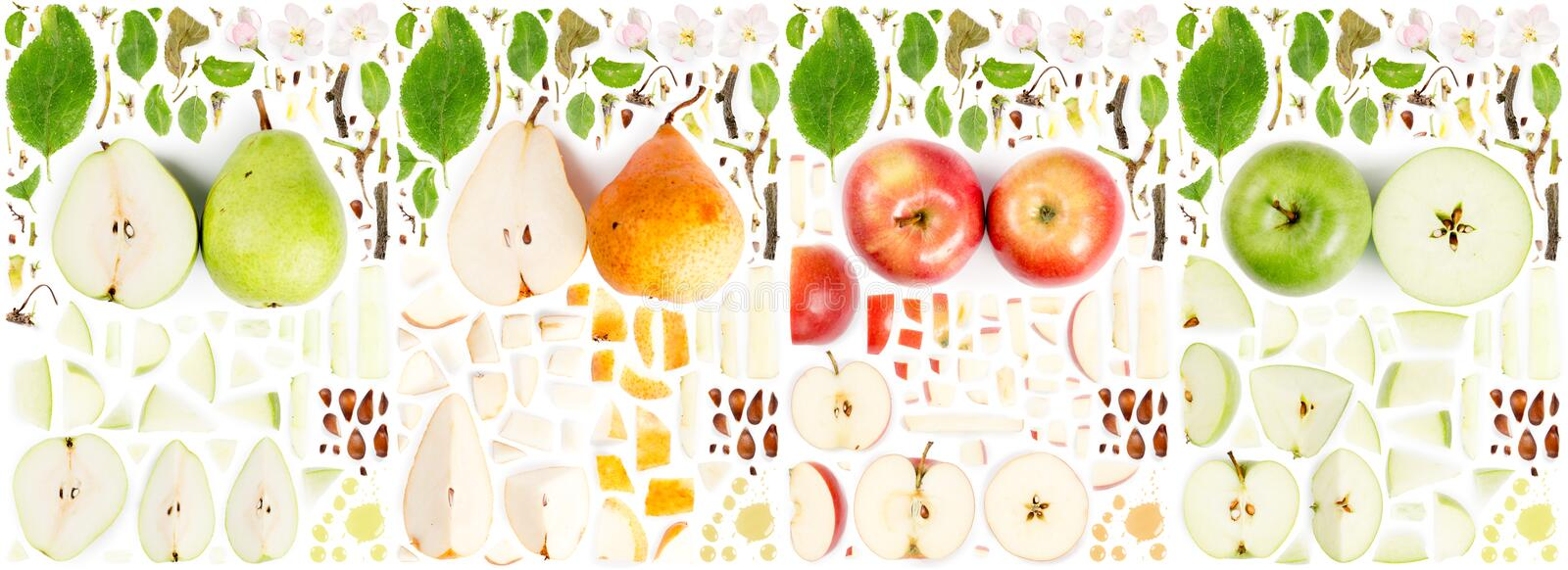 Apple and Pear Slice and Leaf Collection. Large collection of apple and pear fruit pieces, slices and leaves isolated on white background. Top view. Seamless royalty free stock photography